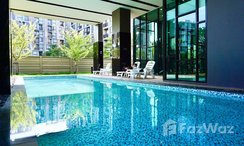 Photos 1 of the Communal Pool at Palm Springs Nimman Phoenix