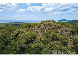 N/A Terreno (Parcela) en venta en , Guanacaste Finca Laila: Huge Development Property near Tamarindo (Costa Rica), Tamarindo, Guanacaste