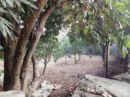N/A Land for sale in Hoa Son, Hoa Binh Cần chuyển nhượng lô đất 4800m2 đã có khuôn viên nhà vườn, tường bao xung quanh tại Hòa Sơn, LS, HB