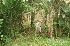 bedroom Land for sale at in Puntarenas, Costa Rica