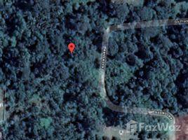 N/A Property for sale in Lipa Noi, Koh Samui Lipa Noi Land For Sale