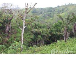 Santa Elena Manglaralto VISTA MAR: The Jungle Is Calling!!, Olón, Santa Elena N/A 土地 售