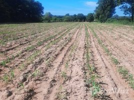 N/A Land for sale in Tum, Nakhon Ratchasima Beautiful land for Sale in Pak Thong Chai