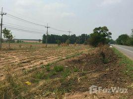 N/A Land for sale in Nong Nam Sai, Sa Kaeo 217 Rai Land Plot for Sale in Watthana Nakhon