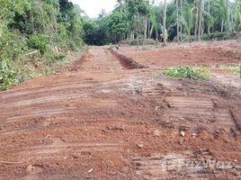 N/A Land for sale in Maret, Koh Samui Maret Land For Sale / 44 Rai 83.7 Wah