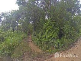 N/A Immobilier a vendre à , Bay Islands Nestled into Utila's greenery, Utila, Islas de la Bahia