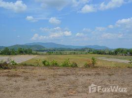 清莱 Tha Khao Plueak 8 Rai Land For Sale In Maechan N/A 土地 售