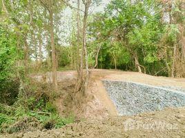 N/A Land for sale in , Luang Prabang Land for sale in Phanom, Louangphrabang