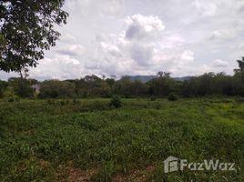 N/A Land for sale in Muak Lek, Saraburi 9 Rai Land in Muak Lek for Sale