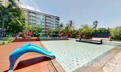 Photos 1 of the Communal Pool at Amari Residences Hua Hin