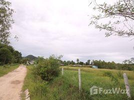 ขายที่ดิน N/A ใน หนองแก, หัวหิน Land For Sale In Soi 102
