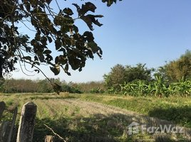 N/A Land for sale in Pa Sang, Chiang Rai Land for Sale in Chiang Rai 19 Rai
