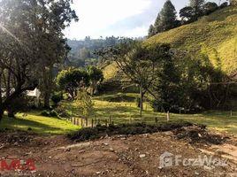 N/A Terreno (Parcela) en venta en , Antioquia VEREDA SAJONIA, A 400 MTS DE LA V�A PRINCIPAL, Rionegro, Antioqu�a