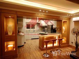 Cairo Penthouse with big terrace rent in maadi degla 3 卧室 顶层公寓 租