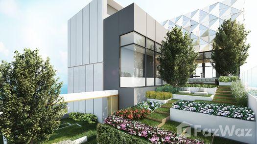 Photos 1 of the Communal Garden Area at Once Pattaya Condominium