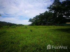 N/A Terreno (Parcela) en venta en , Guanacaste Mountain and Countryside Home Construction Site For Sale in Tilarán, Tilarán, Guanacaste