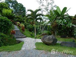1 Habitación Casa en venta en , Puntarenas Platanillo, Tinamaste, Puntarenas