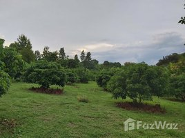 N/A Property for sale in Khi Lek, Chiang Mai 41 Rai Land for Sale in Mae Tang, Chiang Mai