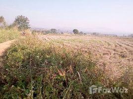清莱 Mae Suai Land For Sale In Mae Suay Chiang Rai N/A 土地 售