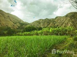 N/A Land for sale in Yasuni, Orellana Large Riverfront Lot in Quinara, Quinará - Vilcabamba, Loja