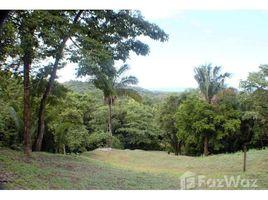 N/A Land for sale in , Guanacaste 5048b Santo Domingo Ocean View Lot #2:Vast Ocean View in Secluded Jungle Setting, Sámara, Guanacaste