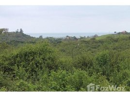 Santa Elena Manglaralto Fincas Kansia: Huge Ocean View Parcel - Looking for Space with Ocean View 10029m2, Olón, Santa Elena N/A 土地 售