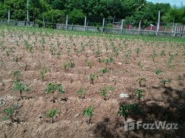 N/A Property for sale in Song, Ubon Ratchathani 1 Rai Land For Sale in Ubon Ratchathaini