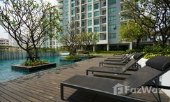Photos 3 of the Communal Pool at The Room Sukhumvit 62