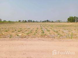 N/A Land for sale in Bo Kru, Suphan Buri 25 Rai Land for Sale in Bo Kru Suphan Buri