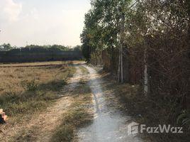 N/A Land for sale in My Hanh Bac, Long An Bán đất Mỹ Hạnh gần Tỉnh Lộ 9, diện tích 1250m2 đất lúa, sổ hồng riêng