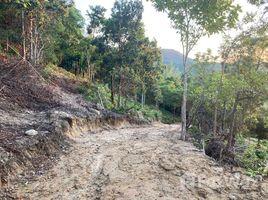 苏梅岛 Ko Pha-Ngan 9 Rai Seaview Land Available in Chaloklum, Ko Phangan N/A 土地 售