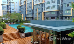 Photos 2 of the Communal Pool at D Condo Kathu