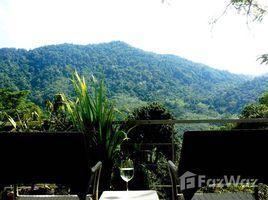 1 Schlafzimmer Wohnung zu vermieten in Kamala, Phuket The Trees Residence