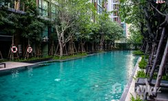 Photos 1 of the Communal Pool at Vtara Sukhumvit 36