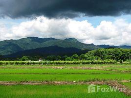 ขายที่ดิน N/A ใน โป่งแพร่, เชียงราย Incredible Mountain Views for Sale 1 Rai