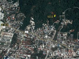 N/A Land for sale in Patong, Phuket 4-1-33 Rai Chanote Patong Land Sale