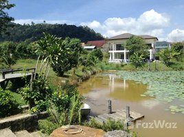 3 Bedrooms Property for rent in Kathu, Phuket Garden Home