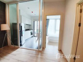 1 Bedroom Condo for rent in Ratsada, Phuket The Base Uptown