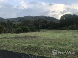 N/A Terreno (Parcela) en venta en , Guanacaste Premier Lot: Lake and Volcano Views with Creek-Any Reasonable Offer Will Be Considered, Tronadora, Guanacaste