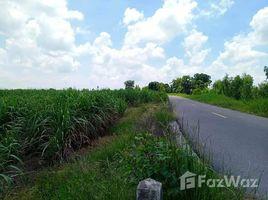 N/A Land for sale in Suk Duean Ha, Chai Nat 10 Rai Land for Sale in Suk Duean Ha, Noen Kham
