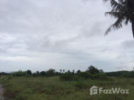 N/A Land for sale in Pran Buri, Hua Hin Pranburi Land with Mountain View