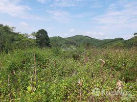 N/A Land for sale in Hop Chau, Hoa Binh CẦN BÁN 10HA ĐẤT LÀM TRẠI LỢN HOẶC TRẠI GÀ QUY MÔ LỚN, TẠI XÃ HỢP CHÂU, LƯƠNG SƠN, HÒA BÌNH