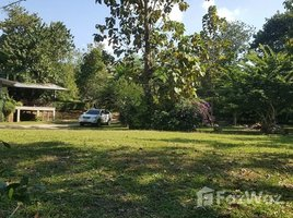 N/A Land for sale in Pa Pae, Chiang Mai Land 20 Rai for Sale with Beautiful View