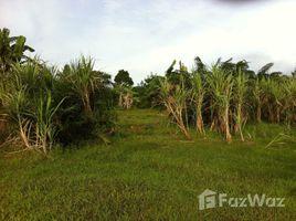 N/A Land for sale in Pa Khlok, Phuket 1 Rai Land Plot for Sale in Pa Khlok Area
