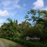 N/A Grundstück zu verkaufen in , Puntarenas Peaceful Fertile Land in Quepos/Aguirre for Sale by Owner