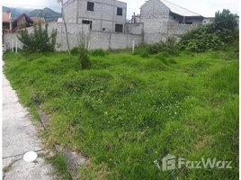 Azuay Gualaceo Gualaceo, Azuay, Address available on request N/A 土地 售