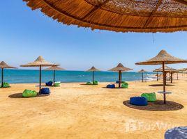 Suez Misr Sinien 3 卧室 房产 售