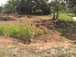 N/A Land for sale in Si Sunthon, Phuket Land for Sale @ Thalang / Phuket
