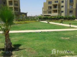 Al Jizah Studio for rent in palm parks compound lake view 开间 顶层公寓 租