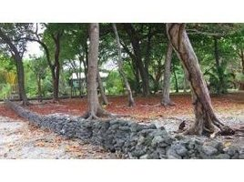 N/A Terrain a vendre à , Bay Islands Stingray Point Dive Site, Utila, Islas de la Bahia